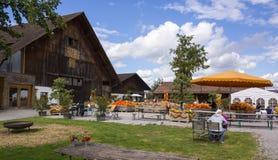 Zurich Schweiz - Bächlihof - pumpalantgård Royaltyfria Foton