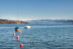 Zurich See mit Alpen Lizenzfreie Stockfotos