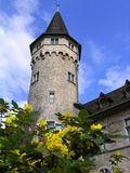 Zurich in spring Royalty Free Stock Image