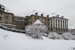 Zurich w zimnym dniu Fotografia Stock