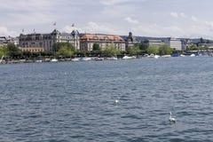 Zurichsee Ζυρίχη Ελβετία Στοκ Εικόνες
