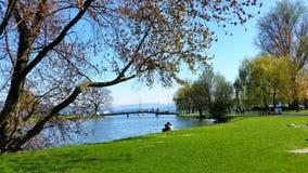 Zurichsee Arkivbild
