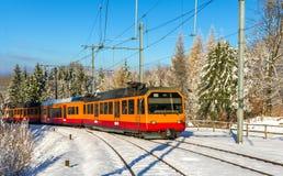 Zurigo S-Bahn sulla montagna di Uetliberg Fotografia Stock Libera da Diritti