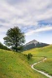 Κοιλάδα Zuriza Στοκ φωτογραφία με δικαίωμα ελεύθερης χρήσης