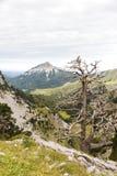 Zuriza`s Valley Royalty Free Stock Photos