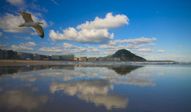 zurriola för strandstadsdonostia gipuzkoa Royaltyfri Fotografi
