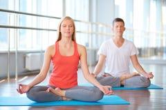 Zusammen meditieren lizenzfreies stockfoto