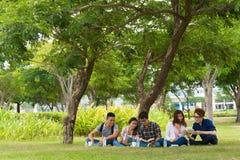 Zusammen studieren Stockfoto