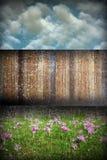 Zusammenfassung beunruhigter Gartenhintergrund Stockfotos