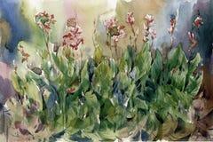 Zusammenfassung blüht Aquarellmalerei Mehrfarbige Blumen des Frühlinges Vektor Abbildung