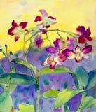 Zusammenfassung blüht das Aquarell, das ursprüngliches buntes von Orchideenblumen malt lizenzfreie abbildung