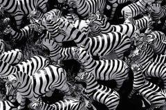 Zusammenfassung der Zebrastatue in den verschiedenen Größen Stockfotografie