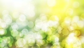 Zusammenfassung unscharfer grüner bokeh Frühlings-Naturhintergrund Neuer und natürlicher Hintergrund stockfotografie