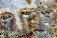 Zusammenfassungsbeschaffenheits-Steinhintergrund mit ursprünglichen Formen stockbild