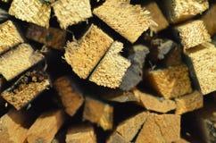 Zusammengefügt den Stöcken des Holzes für Anzündenfeuer, erntend für das hölzerne Anzünden des Feuers Lizenzfreie Stockbilder