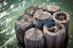 Zusammengerollte hölzerne Bootsdockanhäufungen im grünen Wasser des Michigansees im Februar lizenzfreie stockbilder