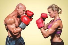 Zusammengesetztes Bild der Seitenansicht der Boxer mit kämpfender Position Lizenzfreie Stockfotos