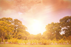 Zusammengesetztes Bild der szenischen Ansicht der braunen Sturmwolke Lizenzfreie Stockbilder