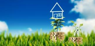 Zusammengesetztes Bild des Grases draußen wachsend Lizenzfreies Stockfoto