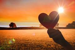 Zusammengesetztes Bild des Herzens Stockfotos