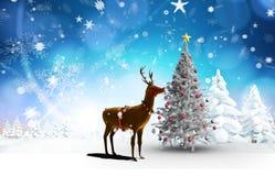 Zusammengesetztes Bild des Weihnachtsbaums und des Rens Lizenzfreie Stockfotos