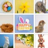 Zusammengesetztes Bild von fröhlichen Ostern mit Eiern und Häschen Stockbilder