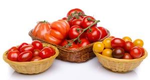 Zusammensetzung der unterschiedlichen Vielzahl der Tomaten Lizenzfreies Stockbild