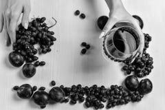 Zusammensetzung des Weins, der Traube und der Pflaumen Lizenzfreie Stockbilder