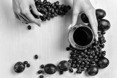 Zusammensetzung des Weins, der Traube und der Pflaumen Lizenzfreie Stockfotografie