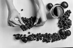 Zusammensetzung des Weins, der Traube und der Pflaumen Lizenzfreies Stockbild