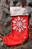 Zusammensetzung einer roten der Weihnachtssocke und -Tannenzweige Stockbilder