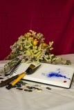 Zusammensetzung eines Sketchbook, der verwelkten Blumen, der Knöpfe, der Bürste, der Spachtel und der Farbe Lizenzfreie Stockfotografie
