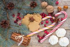 Zusammensetzung für Weihnachten und neues Jahr - Gewürze, Bonbons und Nüsse Lizenzfreie Stockbilder