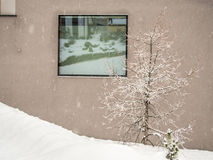 Zusammensetzung mit Fenster, Baum und Schnee Lizenzfreie Stockfotografie