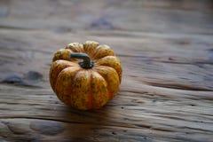 Zusammensetzung mit Halloween-Kürbisen lizenzfreies stockfoto