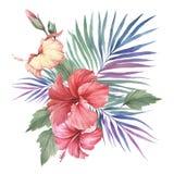 Zusammensetzung mit Hibiscus und Palmblättern Aquarellillustration des Handabgehobenen betrages, stock abbildung