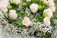 Zusammensetzung mit rosa Blumen Hintergrund nave Stockbilder