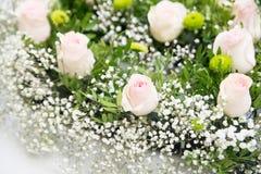 Zusammensetzung mit rosa Blumen Hintergrund nave Stockfotos