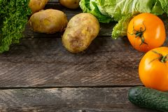 Zusammensetzung mit sortiertem rohem organischem Gemüse Stockbilder