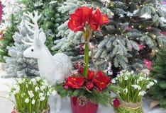 Zusammensetzung mit Weihnachtsbäumen, Blumen und weißen Rotwild lizenzfreies stockbild