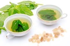Zusammensetzung mit zwei Schalen des tadellosen Tees, der frischen Minze und des braunen Stocks Stockfoto