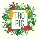Zusammensetzung von den Blättern und von den Blumen von monstera und von Palme Blumen und Knospen von Hibiscusen Tropischer Hinte Lizenzfreie Stockfotografie