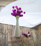 Zusammensetzung von den kleinen, empfindlichen Blumen, schön an ausgebreitet Lizenzfreie Stockfotos