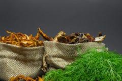 Zusammensetzung von den trockenen Boletus- und Pfifferlingspilzen gelegt in Segeltuchtaschen mit Dill- und Petersilienbesen vor G lizenzfreie stockfotos