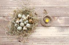 Zusammensetzung von Eiern in einem Nest des Strohs und des Seils Stockfoto