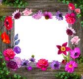Zusammensetzung von Gartenblumen auf hölzernem Hintergrund stockbilder
