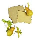 Zusammensetzung von reifen Birnen des Herbstes, von Lippenpapier und von Ahornsamen Lizenzfreie Stockfotos