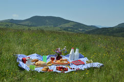 Zusammensetzung von Rich Picnic Food Stockfoto