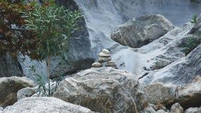 Zusammensetzung von Steinen mit einem Baum Lizenzfreies Stockfoto