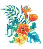 Zusammensetzung von tropischen Anlagen stock abbildung